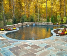 Geometric Pool with Raised Wall and Pool Landscaping